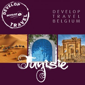 Brochure Tunisie 2013-2014 DevelopTravel